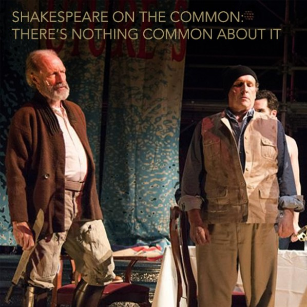 shakespeare on common